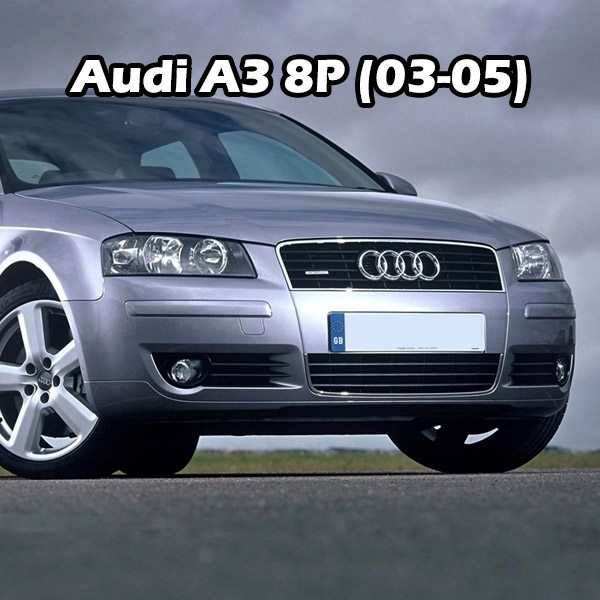 Audi A3 8P (03-05)
