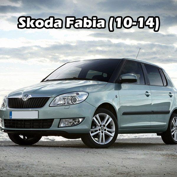 Skoda Fabia (10-14)